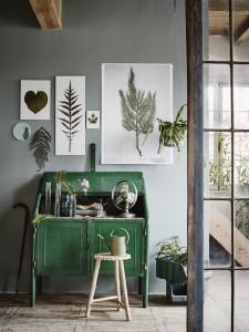 botanische-prints